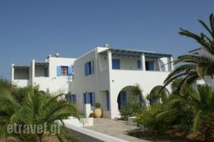 Glyfada Beach Studios_accommodation_in_Hotel_Cyclades Islands_Naxos_Naxos Chora