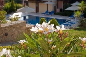 Eligia Villas_accommodation_in_Villa_Crete_Rethymnon_Plakias