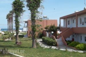 Jonathan Studio Apartments_travel_packages_in_Dodekanessos Islands_Kos_Tigaki