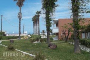 Jonathan Studio Apartments_holidays_in_Apartment_Dodekanessos Islands_Kos_Tigaki