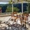 Fiskardo Olive Cottage_holidays_in_Hotel_Ionian Islands_Kefalonia_Fiskardo