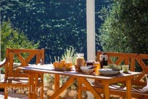 Fiskardo Olive Cottage_best prices_in_Hotel_Ionian Islands_Kefalonia_Fiskardo