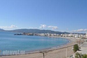 Haraki Village_travel_packages_in_Dodekanessos Islands_Rhodes_Rhodes Areas