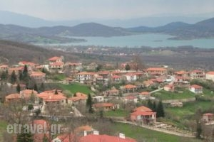Thea Guesthouse_best deals_Hotel_Thessaly_Karditsa_Neochori