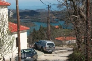 Thea Guesthouse_best prices_in_Hotel_Thessaly_Karditsa_Neochori
