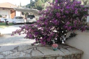 Casa Di Giorgio_accommodation_in_Hotel_Ionian Islands_Lefkada_Nikiana