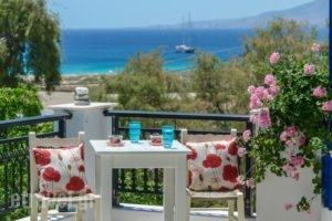 Studios Tasia_accommodation_in_Hotel_Cyclades Islands_Naxos_Naxos chora