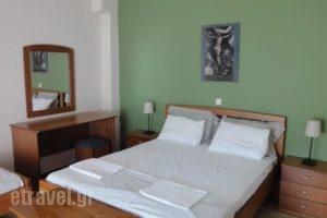 Studios Drakontis_lowest prices_in_Hotel_Aegean Islands_Thasos_Thasos Chora
