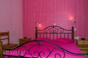 Studios Marina_accommodation_in_Hotel_Cyclades Islands_Naxos_Naxos chora