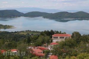 Thea Guesthouse_holidays_in_Hotel_Thessaly_Karditsa_Neochori