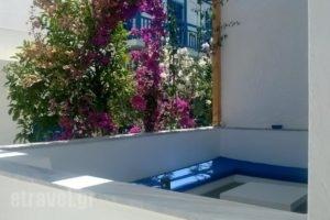 Doron Hotel Delfini_accommodation_in_Hotel_Cyclades Islands_Naxos_Naxos Chora