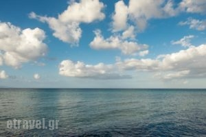 Calypso Studios_best prices_in_Hotel_Ionian Islands_Zakinthos_Zakinthos Rest Areas