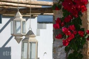 Irida Studios_best prices_in_Hotel_Cyclades Islands_Naxos_Naxos Chora