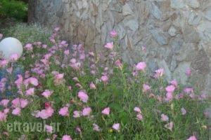 Kolymbari Beach_travel_packages_in_Crete_Chania_Kolympari