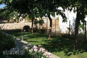 Eleana Studios_best prices_in_Hotel_Sporades Islands_Skyros_Skyros Rest Areas