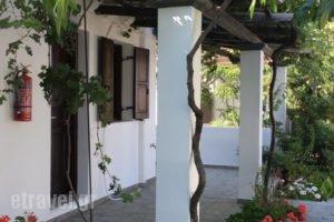 Eleana Studios_holidays_in_Hotel_Sporades Islands_Skyros_Skyros Rest Areas