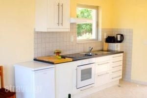 Botzoris Apartments_holidays_in_Apartment_Ionian Islands_Corfu_Corfu Rest Areas