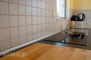 Botzoris Apartments_best prices_in_Apartment_Ionian Islands_Corfu_Corfu Rest Areas