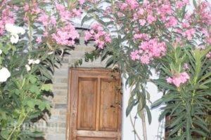 Blo_travel_packages_in_Sporades Islands_Skopelos_Skopelos Chora