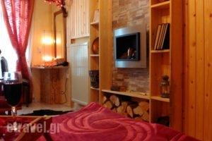 Guesthouse Chrysa_best deals_Hotel_Central Greece_Viotia_Arachova