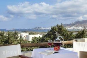 Kedros Villas_best prices_in_Villa_Cyclades Islands_Naxos_Naxos chora
