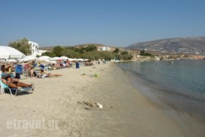 Krios Beach Camping_accommodation_in_Hotel_Cyclades Islands_Paros_Paros Chora