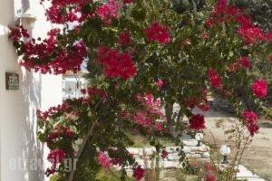Kedros Villas_best deals_Villa_Cyclades Islands_Naxos_Naxos chora