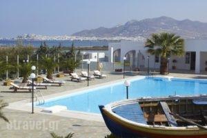 Kedros Villas_accommodation_in_Villa_Cyclades Islands_Naxos_Naxos chora
