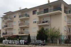 Tokamanis Apartments   hollidays