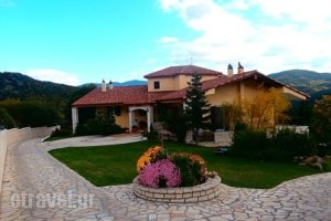 Margit'Suites Hotel_lowest prices_in_Hotel_Central Greece_Evritania_Korischades