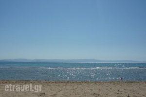 Siskos_travel_packages_in_Ionian Islands_Zakinthos_Zakinthos Chora