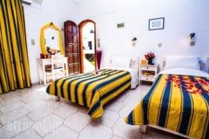 Creta Mar-Gio_lowest prices_in_Hotel_Crete_Heraklion_Malia