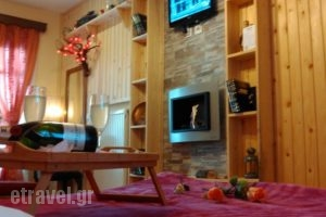 Guesthouse Chrysa_accommodation_in_Hotel_Central Greece_Viotia_Arachova