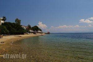 Vergina_holidays_in_Hotel_Central Greece_Evia_Edipsos