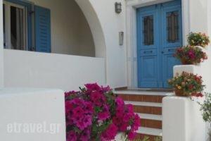9 Muses Naxos_accommodation_in_Hotel_Cyclades Islands_Naxos_Naxos chora