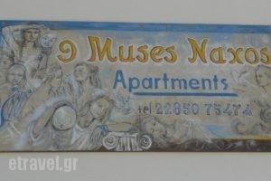 9 Muses Naxos_lowest prices_in_Hotel_Cyclades Islands_Naxos_Naxos chora