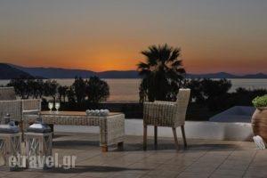 Galaxy Hotel_accommodation_in_Hotel_Cyclades Islands_Naxos_Naxos Chora
