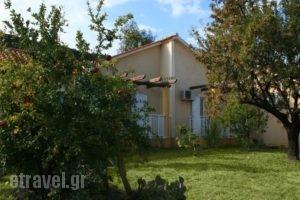 Light House_accommodation_in_Hotel_Ionian Islands_Kefalonia_Kefalonia'st Areas