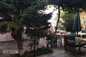 Studios Drakontis_best deals_Hotel_Aegean Islands_Thasos_Thasos Chora
