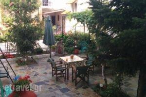 Studios Drakontis_best prices_in_Hotel_Aegean Islands_Thasos_Thasos Chora