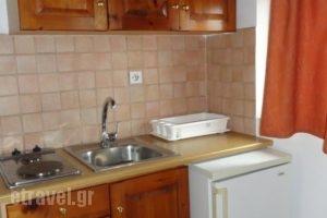 Pardalakis Studios_lowest prices_in_Hotel_Crete_Chania_Kolympari