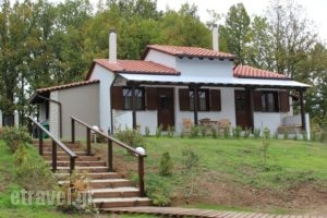 Kedros_accommodation_in_Hotel_Macedonia_Halkidiki_Arnea