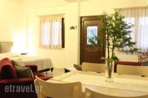 Kedros_best deals_Hotel_Macedonia_Halkidiki_Arnea