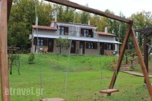 Kedros_lowest prices_in_Hotel_Macedonia_Halkidiki_Arnea