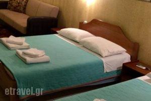 Tsironis Rooms_lowest prices_in_Room_Epirus_Ioannina_Zitsa