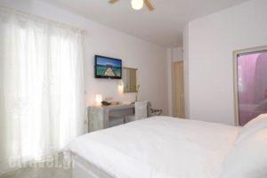The Saint Vlassis_holidays_in_Hotel_Cyclades Islands_Naxos_Naxos chora