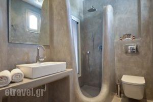 The Saint Vlassis_accommodation_in_Hotel_Cyclades Islands_Naxos_Naxos chora