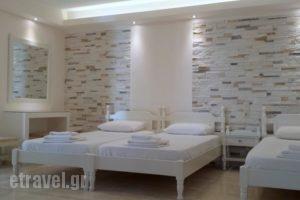 Margo Studios_best prices_in_Hotel_Cyclades Islands_Naxos_Naxos chora