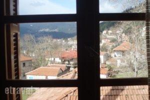 Elati Apartments_accommodation_in_Apartment_Thessaly_Trikala_Elati