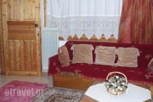 Elati Apartments_lowest prices_in_Apartment_Thessaly_Trikala_Elati